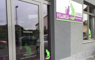 schaufensterbeschriftung-hundesalon-fellness